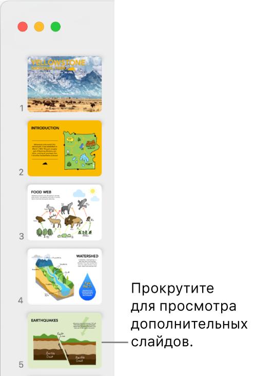 Навигатор слайдов. По вертикали отображаются пять слайдов в порядке их следования. Возможна прокрутка для просмотра других слайдов.