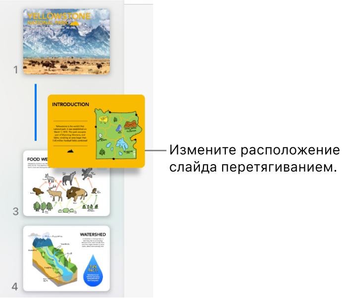 Навигатор слайдов. Показана миниатюра перемещенного слайда, помеченная линией слева.