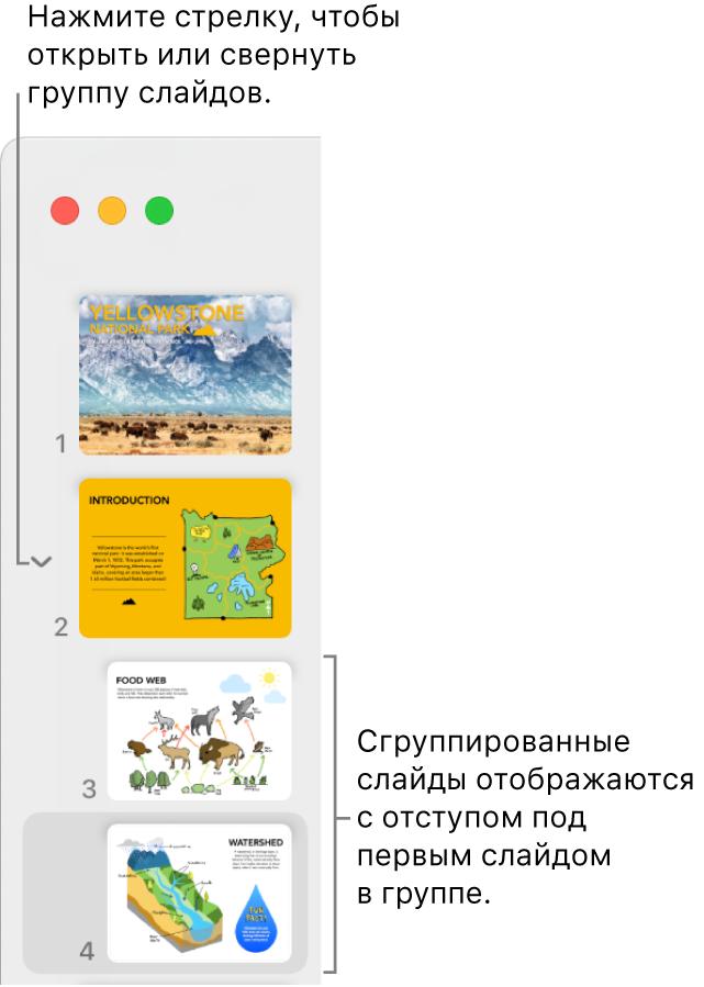 Навигатор слайдов, вкотором показаны слайды сотступом.