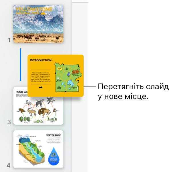 Навігатор слайдів, перевпорядковані мініатюри слайдів та лінія ліворуч.
