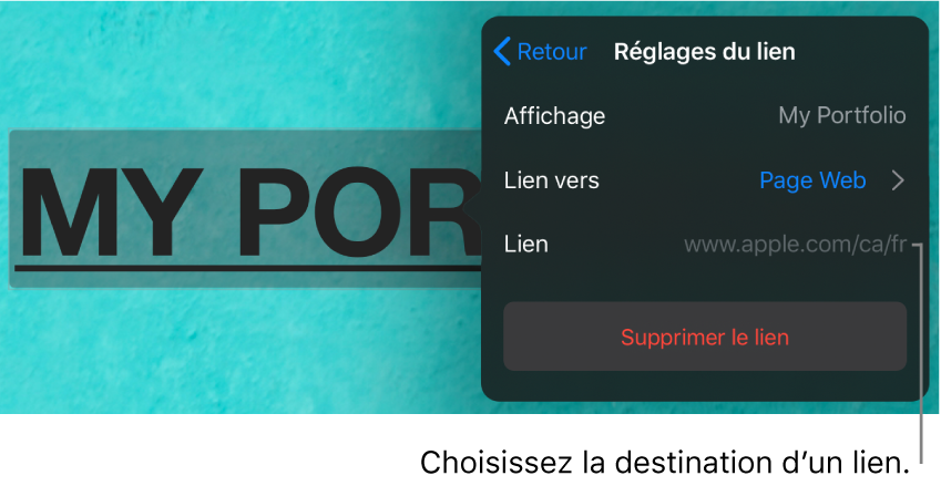 Les commandes Réglages du lien avec les champs Affichage, Lien vers (destination: Page Web) et Lien. Le bouton Supprimer le lien se trouve au bas.