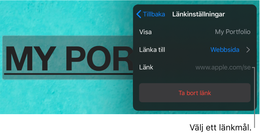 Reglage för länkinställningar med fält för Visa, Länka till (Webbsida är valt) och Länk. Längst ned finns knappen Ta bort länk.