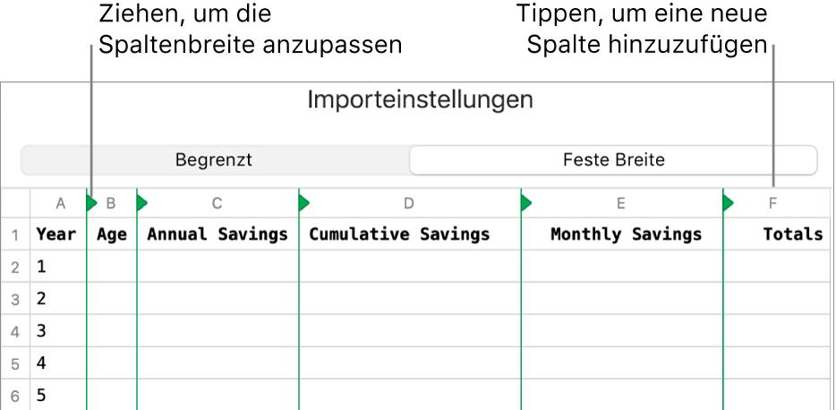 Die Importeinstellungen für eine Textdatei mit fester Breite.