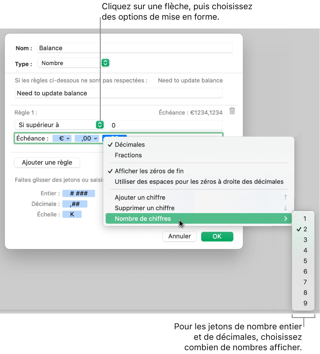 La fenêtre de format de cellule personnalisé présentant les commandes permettant de choisir des options de mise en forme personnalisée.