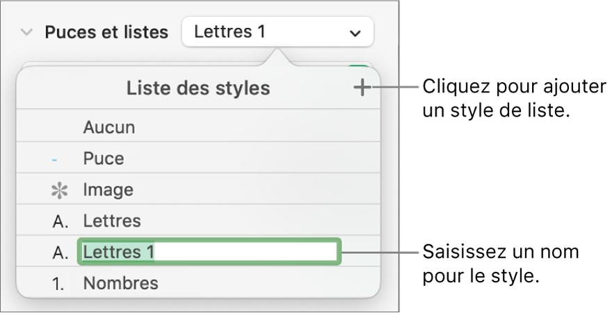 Menu local «Styles de liste» avec un bouton Ajouter dans le coin supérieur droit et un nom de style de paramètre fictif dont le texte est sélectionné.