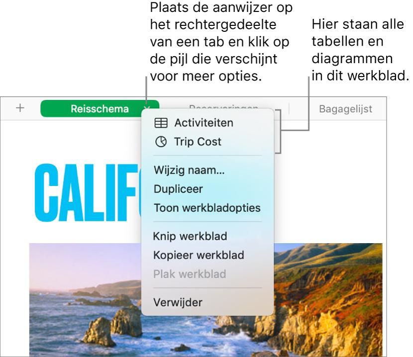 Een spreadsheettab met het contextuele menu geopend met daarin onder meer de optie 'Dupliceer'.