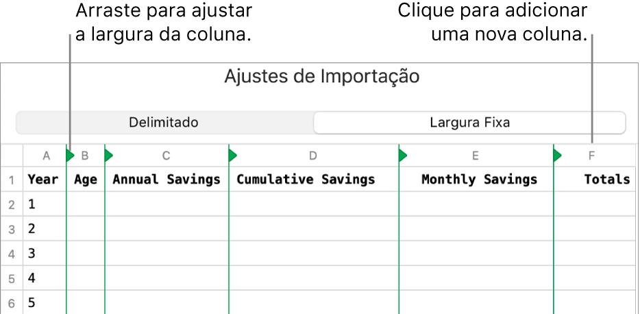 Ajustes de importação para um arquivo de texto de largura fixa.