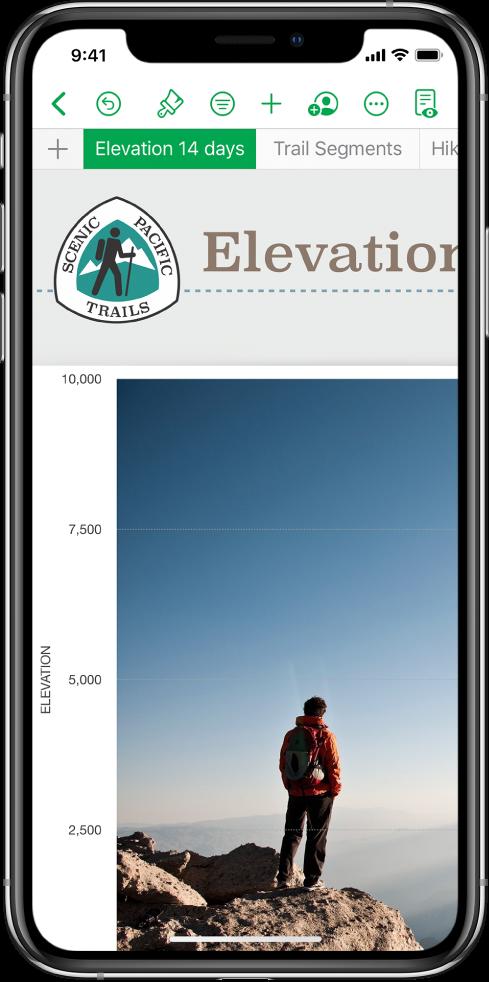 """Una hoja de cálculo que hace un seguimiento de información de excursiones de senderismo, mostrando los nombres de las hojas cerca de la parte superior de la pantalla. El botón """"Agregar hoja"""" se encuentra a la izquierda seguido de las pestañas Elevación y Segmentos."""