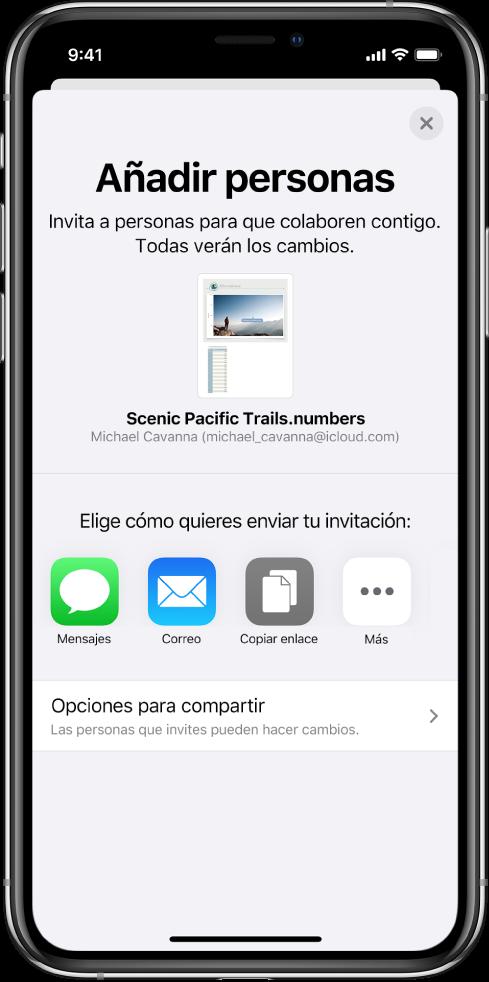 """La pantalla """"Añadir personas"""" mostrando una imagen de la hoja de cálculo que se va a compartir. Debajo aparecen botones de las maneras de enviar la invitación, incluidos Mensajes y Mail, un botón """"Copiar enlace"""" y otros. En la parte inferior está el botón """"Opciones para compartir""""."""