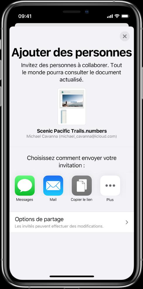 L'écran Ajouter affichant une image de la feuille de calcul à partager. En dessous se trouvent des boutons permettant d'envoyer l'invitation de diverses façons, notamment les boutons Messages, Mail, Copier le lien et Plus. Au bas se trouve le bouton Options de partage.