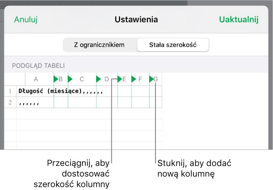 Ustawienia importowania pliku tekstowego ostałej szerokości.