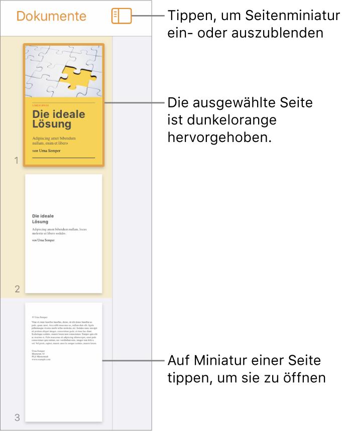"""Die Miniaturdarstellung der Seiten links auf dem Bildschirm mit einer einzelnen ausgewählten Seite. Die Taste """"Darstellungsoptionen"""" über den Miniaturen."""