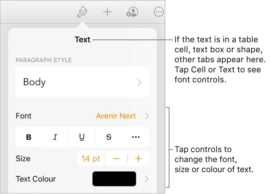 Text controls in the Format menu for setting paragraph and character styles, font, size and colour.