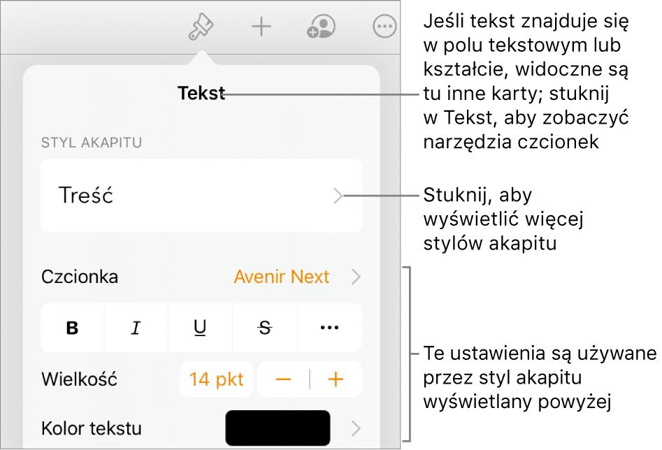 Menu Format znarzędziami tekstu pozwalającymi na ustawianie stylów akapitu, stylów znaków, czcionki, wielkości oraz koloru.