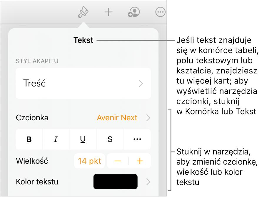 Narzędzia tekstów wmenu Format służą do ustawiania stylów akapitu iznaków oraz czcionek ich wielkości ikoloru.