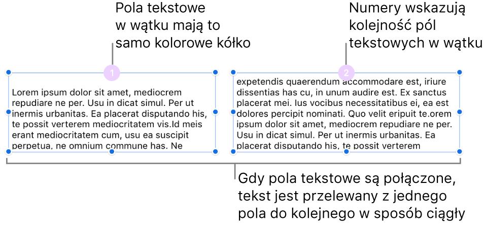 Dwa pola tekstowe zpurpurowym kółkiem na górze oraz liczbą 1 i2 wdanym kółku.