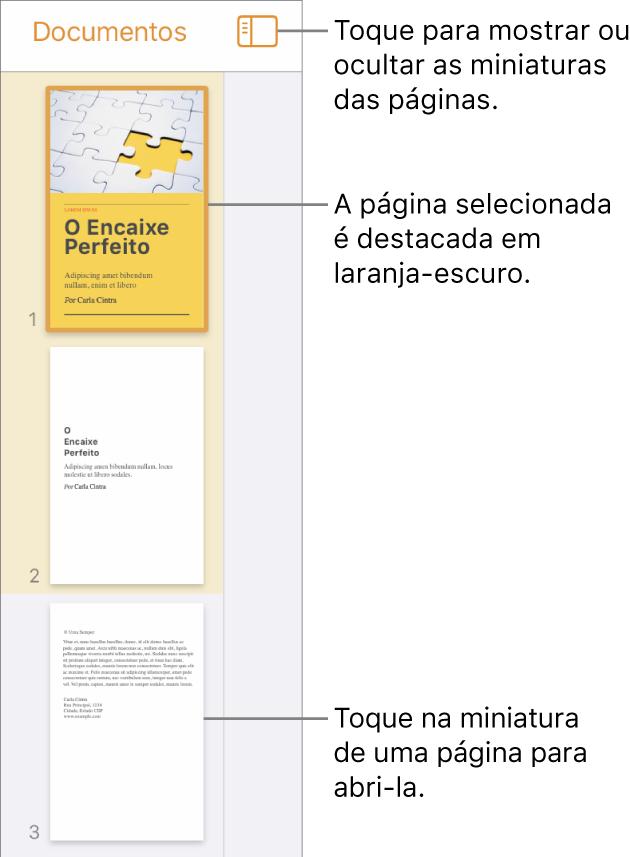 Visualização de Miniaturas de Página na parte esquerda da tela com uma página selecionada. O botão Opções de Visualização aparece acima das miniaturas.