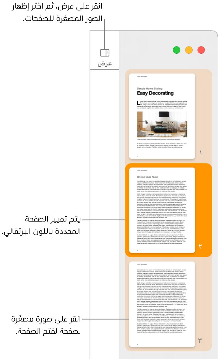 الشريط الجانبي على الجانب الأيمن من نافذة Pages وبه عرض الصور المصغرة للصفحات مفتوح مع صفحة محددة مميزة باللون البرتقالي الداكن.