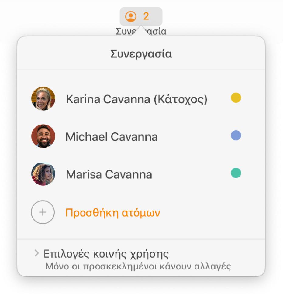 Το μενού «Συνεργασία», στο οποίο εμφανίζονται τα ονόματα των ατόμων που συνεργάζονται στο έγγραφο. Οι επιλογές κοινής χρήσης εμφανίζονται κάτω από τα ονόματα.