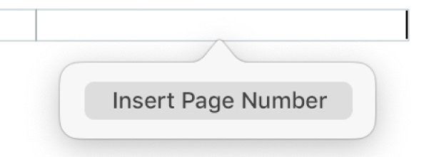 The Insert Page Number button below the header.