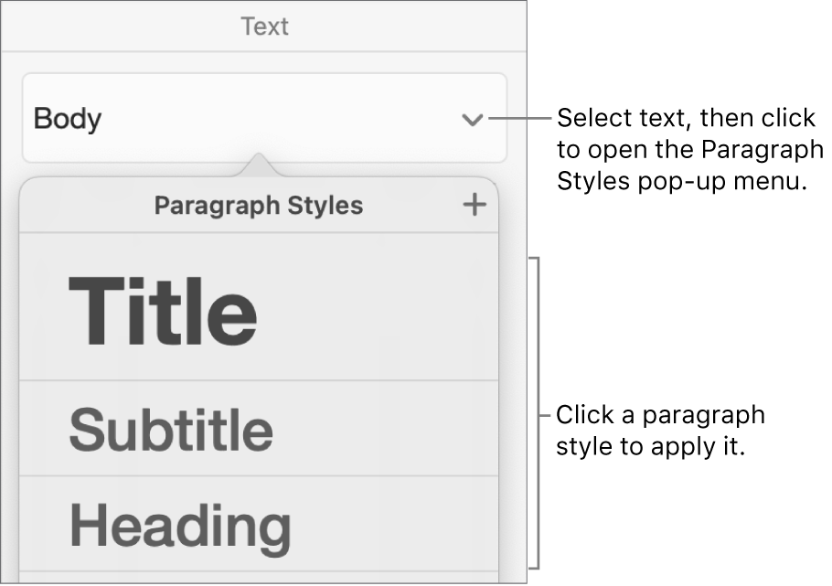 The Paragraph Styles menu.