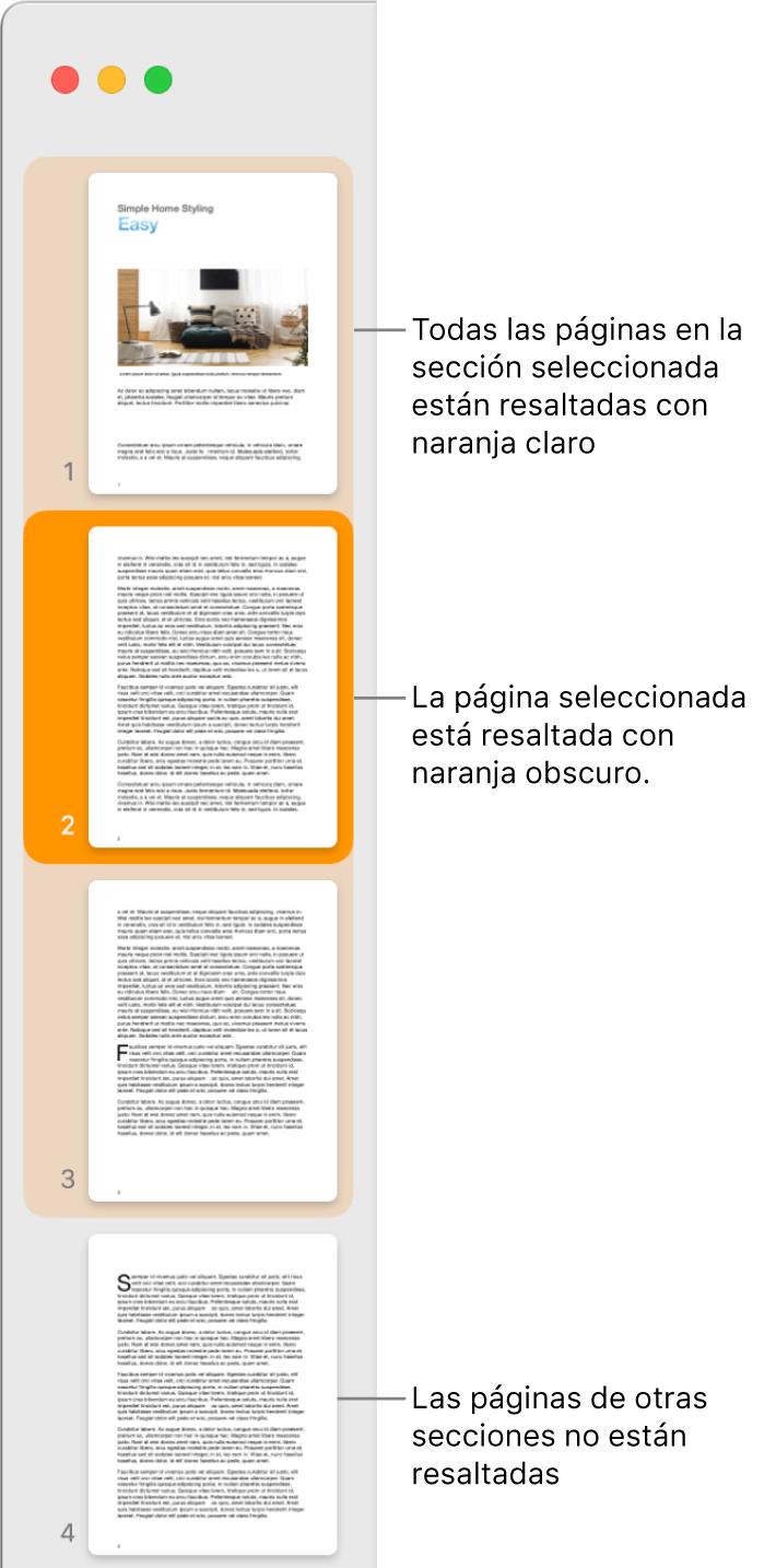 Barra lateral Visualización de miniaturas de página con la página seleccionada resaltada en naranja oscuro, y todas las páginas de la sección seleccionada resaltadas en naranja claro.