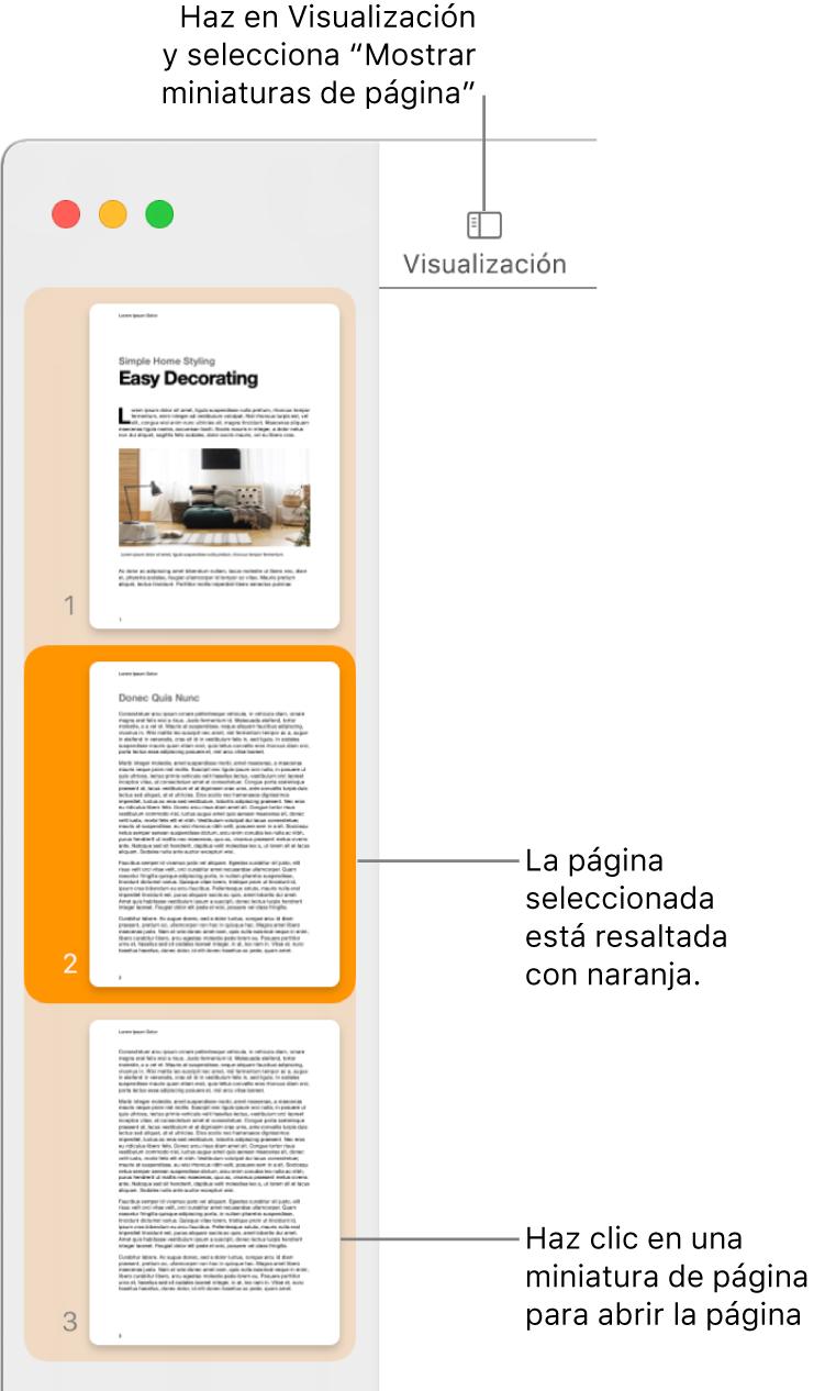 """La barra lateral a la izquierda de la ventana de Pages con la visualización """"Miniaturas de página"""" abierta, y una página seleccionada que se resalta en naranja oscuro."""