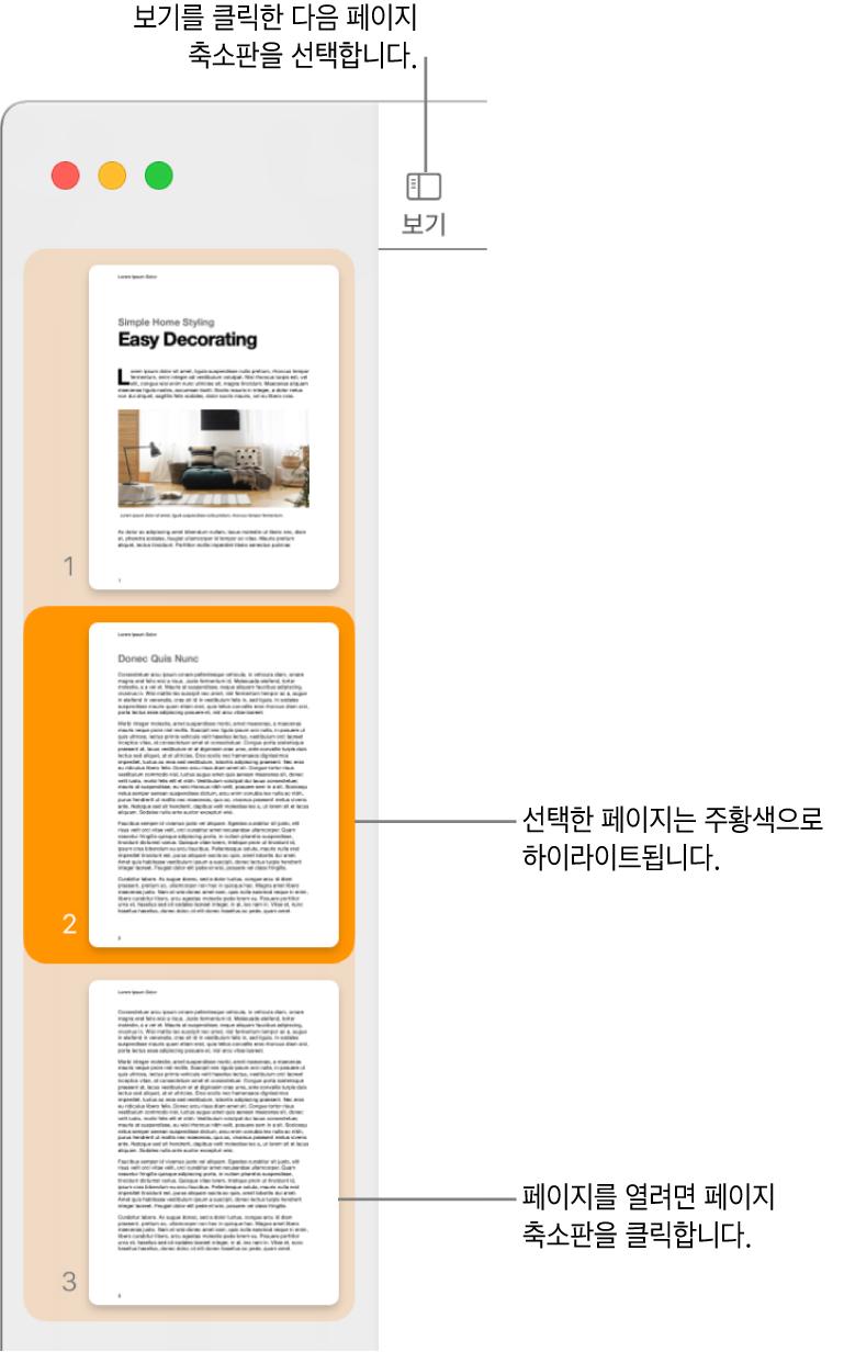 Pages 윈도우 왼쪽 측면의 사이드바에 페이지 축소판 보기가 열려 있고 선택된 페이지는 어두운 주황색으로 하이라이트됨.