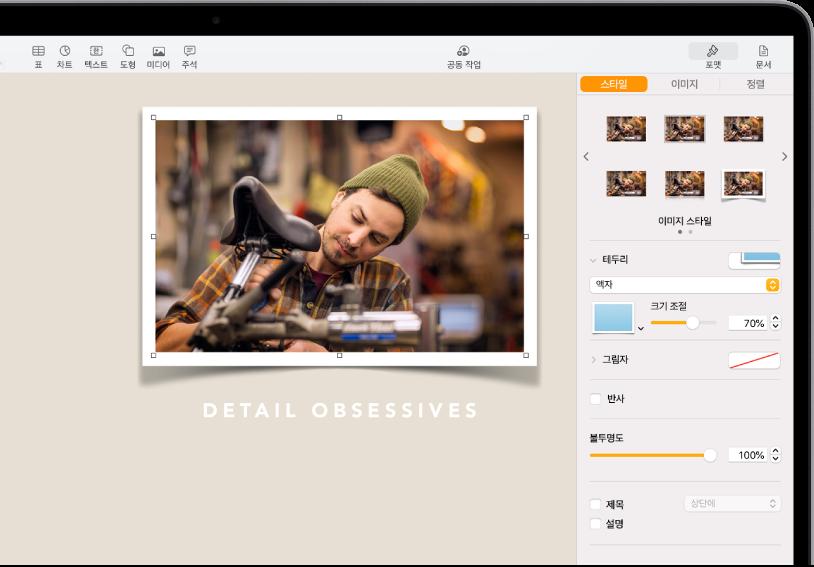 선택된 이미지의 크기 및 모양을 변경하기 위한 포맷 제어기. 제어기 상단에 있는 스타일, 이미지 및 정렬 버튼.