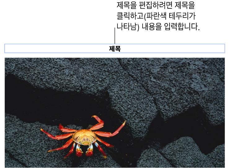 사진 아래에 '제목'이라고 나타나는 위치 지정자 제목. 제목 필드 주위의 파란색 윤곽선은 선택되었음을 나타냄.