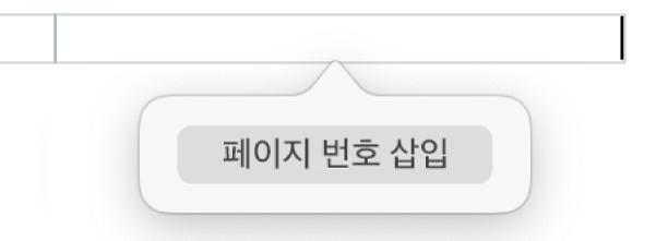 머리말 아래에 있는 페이지 번호 삽입 버튼.