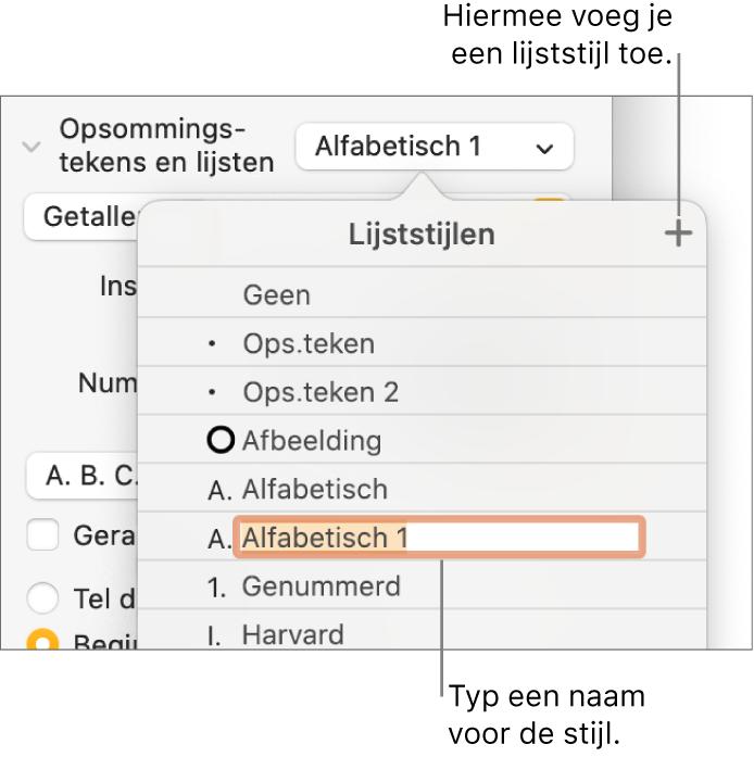 Het venstermenu 'Lijststijlen' met een plusknop in de rechterbovenhoek en een tijdelijke stijlnaam waarvan de tekst geselecteerd is.