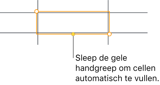 Een geselecteerde cel met een gele greep die je kunt slepen om cellen automatisch te vullen.