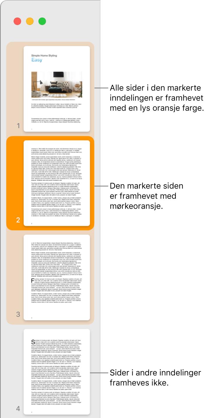 Miniatyrvisning-sidepanelet med den markerte siden uthevet i mørk oransje og alle sider i den markerte inndelingen uthevet i lys oransje.
