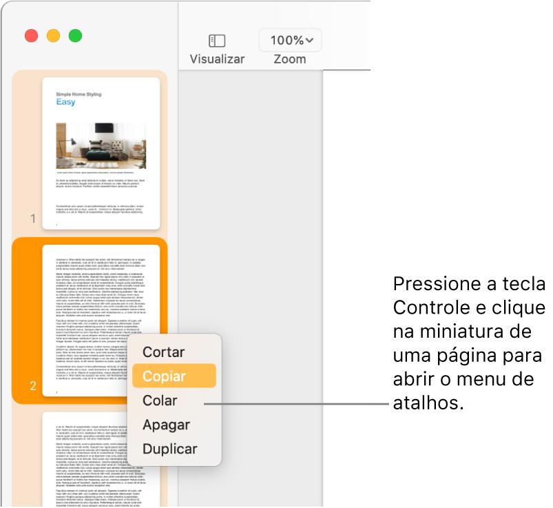 Visualização de Miniaturas de Página, com uma miniatura selecionada e o menu de atalho aberto.