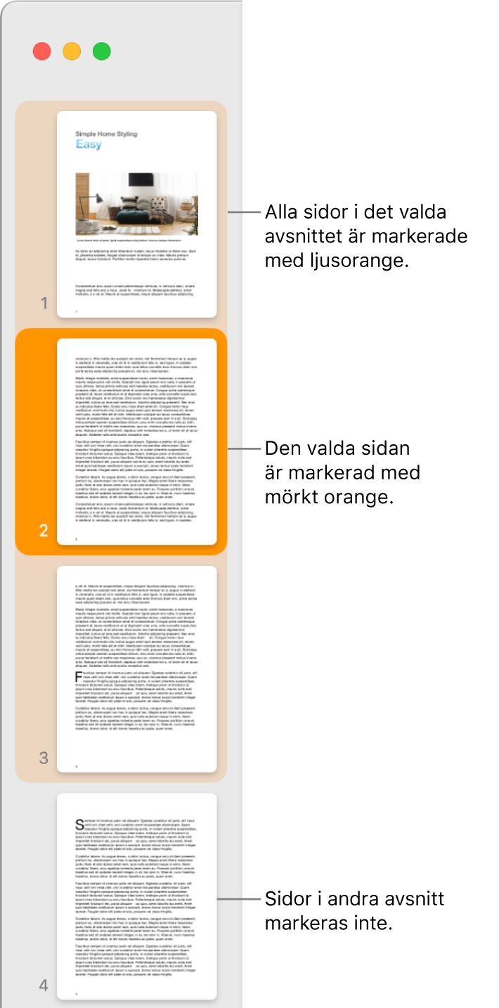 Sidofältet Miniatyrvy med den valda sidan markerad med mörkt orange och alla sidor i det valda avsnittet markerade med ljust orange.