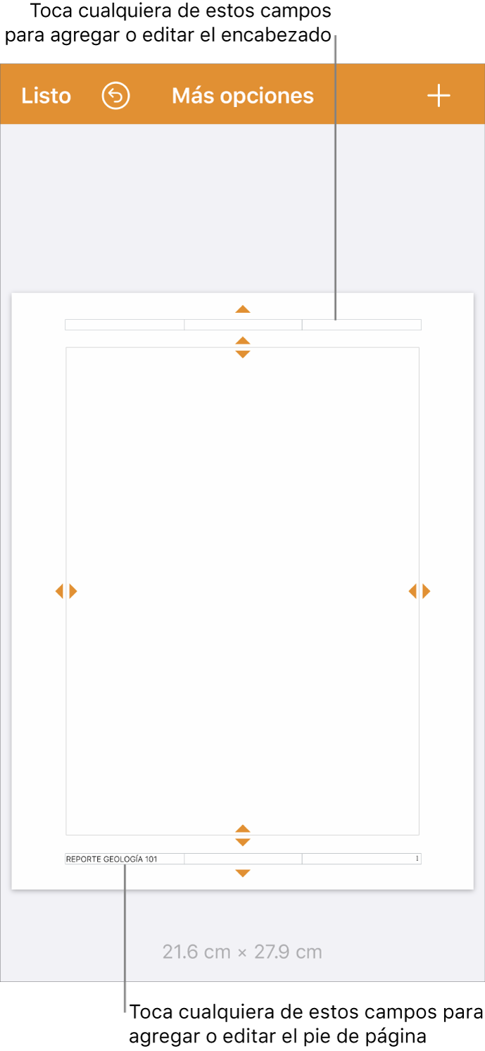 """La visualización """"Más opciones"""" con tres campos en la parte superior del documento para los encabezados y con tres campos en la parte inferior para los pies."""