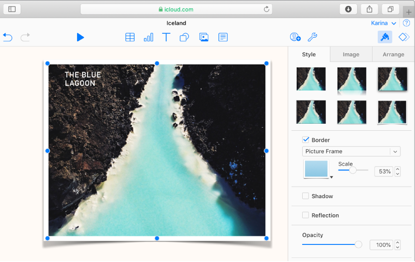 The selected image on the slide has a picture frame border, and the Style tab of the Format sidebar is open with Picture Frame selected from the border menu.