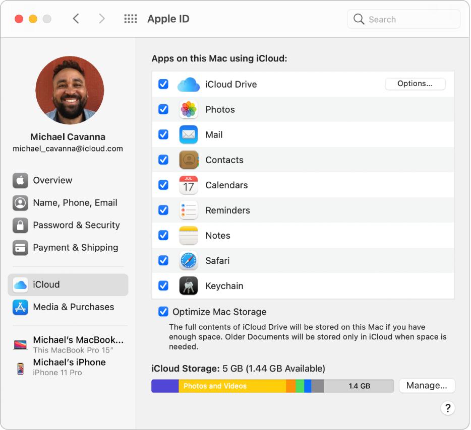 Fenêtre Préférences Système avec les fonctionnalités iCloud sélectionnées.