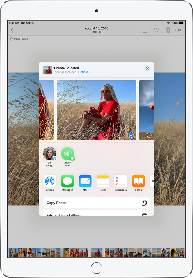 The share photos window is in the center of the screen. Photos are across the top of the window; one photo is selected, indicated with a checkmark. The row beneath the photos suggests recent contacts to share with. Below the suggested contacts are sharing options, from left to right, AirDrop, Messages, Mail, Notes, Reminders, and Books. At the bottom of the share screen is a row of actions. From top to bottom, Copy Photo and Add to Shared Album are displayed.