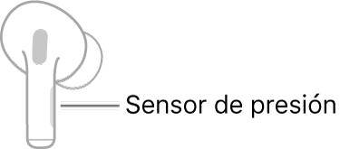 Ilustración de un AirPod derecho en el que se indica la ubicación del sensor de presión. Al colocar el AirPod en el oído, el sensor de presión se encuentra en el borde superior de la parte cilíndrica.