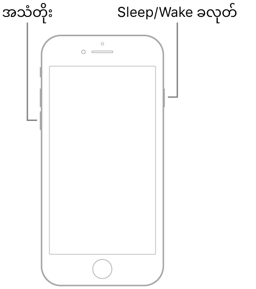 ဖုန်းမျက်နှာပြင်ဖော်ပြထားသည့် iPhone 7 ၏ နမူနာပြသချက်တစ်ရပ်။ အသံတိုးသည့်ခလုတ်အား ထိုဖုန်း၏ဘယ်ဘက်တွင် ပြသထားပြီး Sleep/Wake ခလုတ်အား ညာဘက်တွင်ပြသထားသည်။