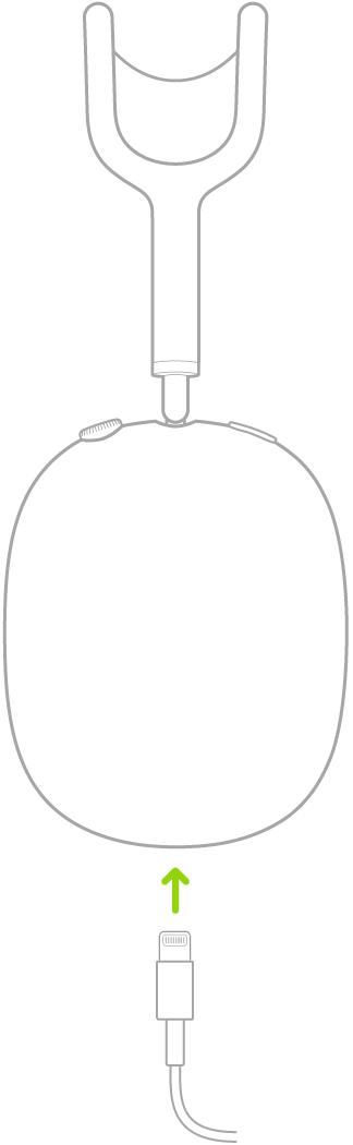 Иллюстрация подсоединения зарядного кабеля кнаушникам AirPodsMax.