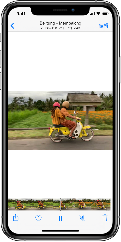 影片播放器在螢幕中央。螢幕底部顯示從左至右的影格檢視。影格顯示器下方,從左至右為「分享」、「喜好項目」、「暫停」、「靜音」和「刪除」按鈕。