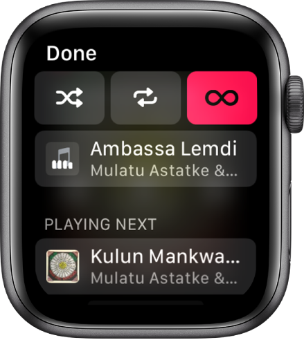 The tracklist window showing Shuffle, Repeat, and Auto Play buttons at the top, and one track directly below. Near the bottom, another track appears below Playing Next.