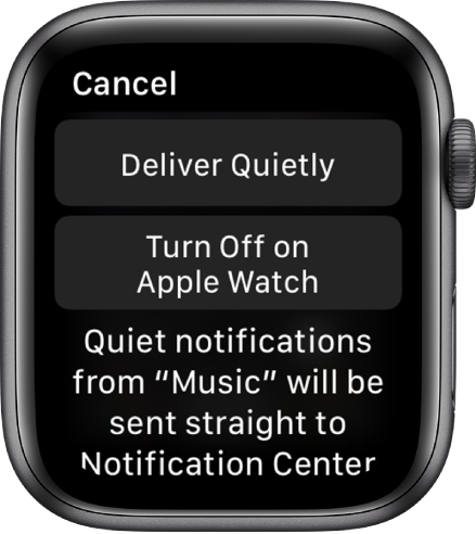 """Apple Watch"" pranešimų nustatymai. Viršutinio mygtuko tekstas ""Deliver Quietly"", o apatinio mygtuko tekstas ""Turn Off on Apple Watch""."