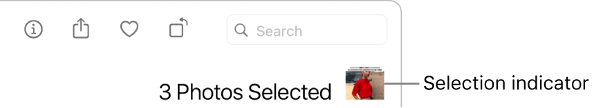 A selection indicator showing that three photos are selected.