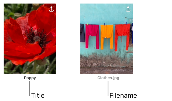 Two photos, one showing a title below it and another showing a filename below it.