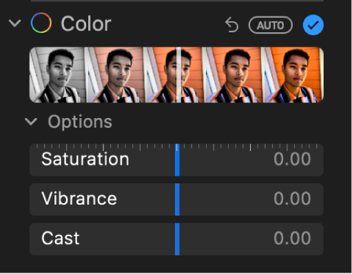 The Color area of the Adjust pane showing sliders for Saturation, Vibrance, and Cast.