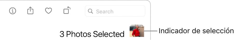 Un indicador de la selección mostrando tres fotos seleccionadas.